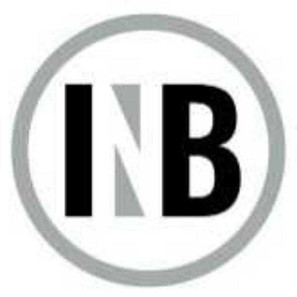 Indy Nets Basketball Club