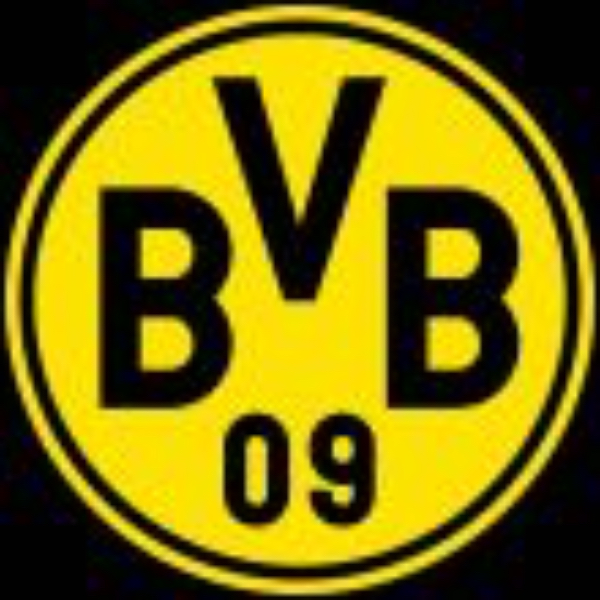 BVB International Academy America (Boys)