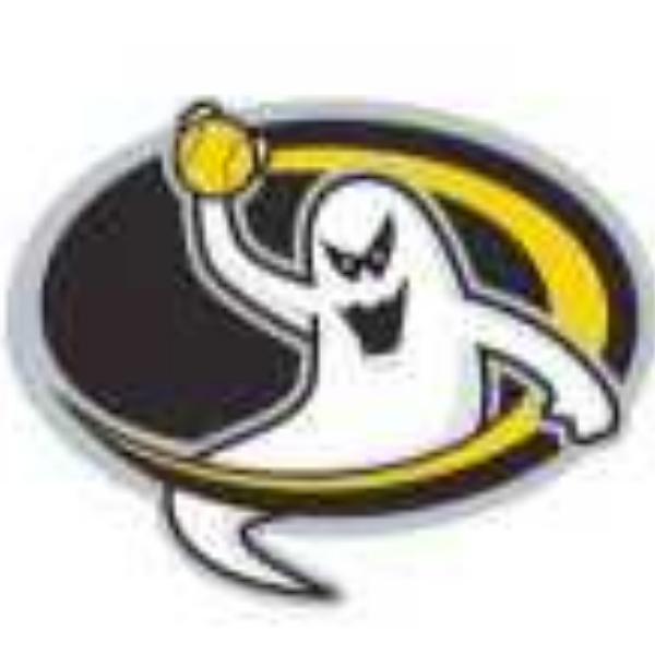 Pittsburgh Spirit Softball