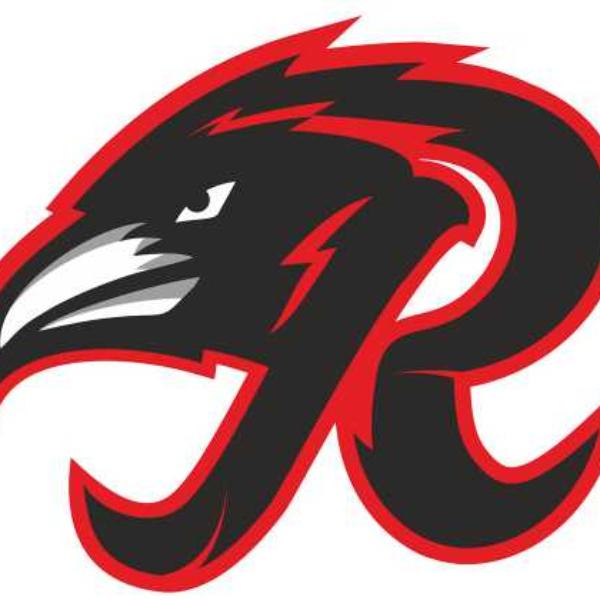 Chicago Ravens Softball