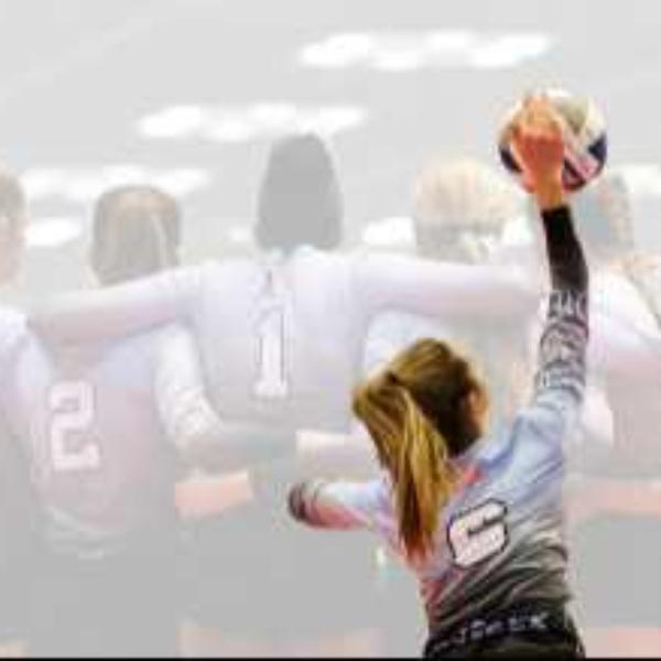Elite Volleyball