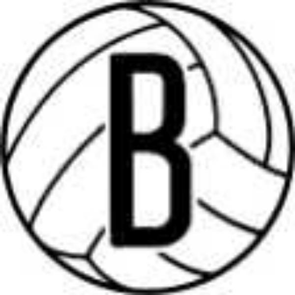 Brooklyn Elite Volleyball